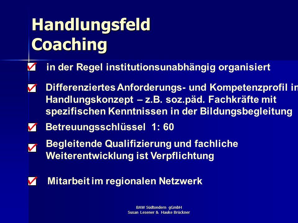 BAW Südtondern gGmbH Susan Lesener & Hauke Brückner Betreuungsschlüssel 1: 60 Mitarbeit im regionalen Netzwerk Begleitende Qualifizierung und fachlich