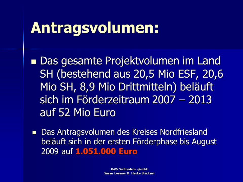 BAW Südtondern gGmbH Susan Lesener & Hauke Brückner Antragsvolumen: Das gesamte Projektvolumen im Land SH (bestehend aus 20,5 Mio ESF, 20,6 Mio SH, 8,