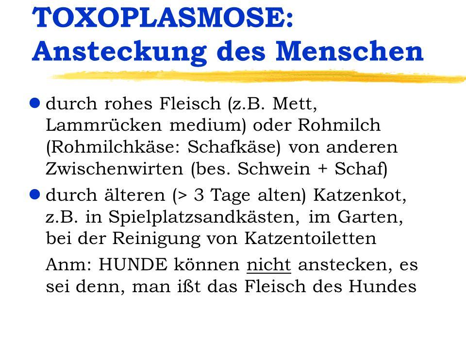TOXOPLASMOSE: Ansteckung des Menschen ldurch rohes Fleisch (z.B. Mett, Lammrücken medium) oder Rohmilch (Rohmilchkäse: Schafkäse) von anderen Zwischen