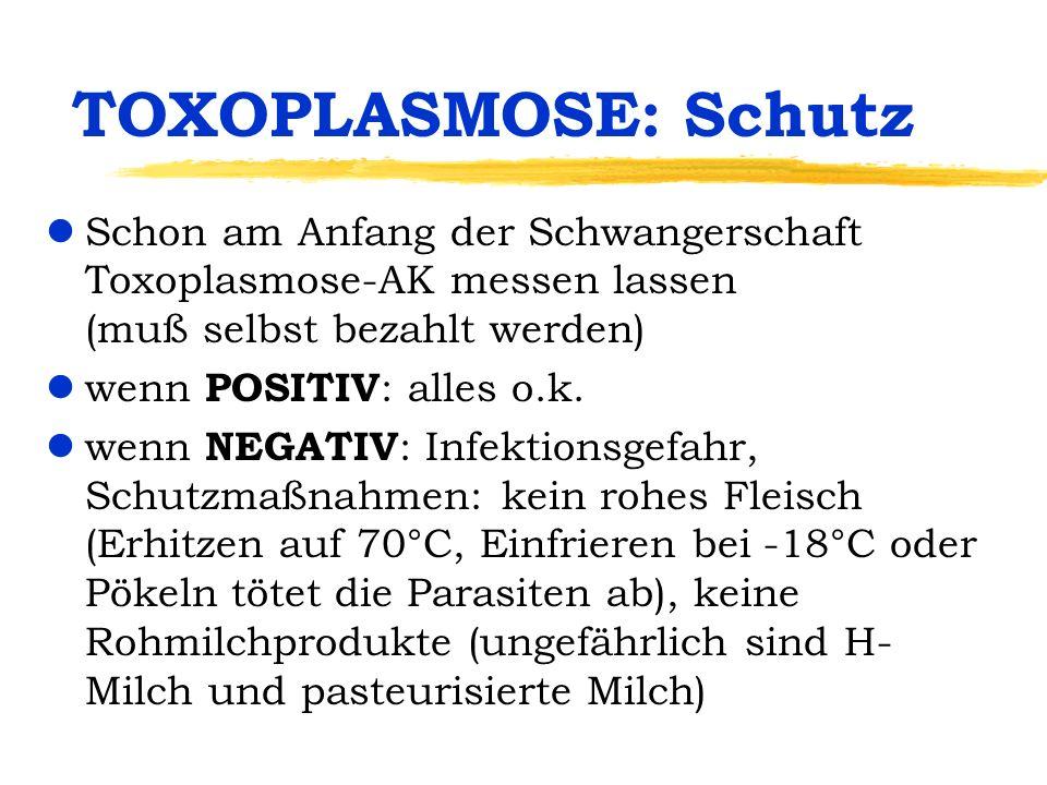 TOXOPLASMOSE: Schutz lSchon am Anfang der Schwangerschaft Toxoplasmose-AK messen lassen (muß selbst bezahlt werden) lwenn POSITIV : alles o.k. lwenn N