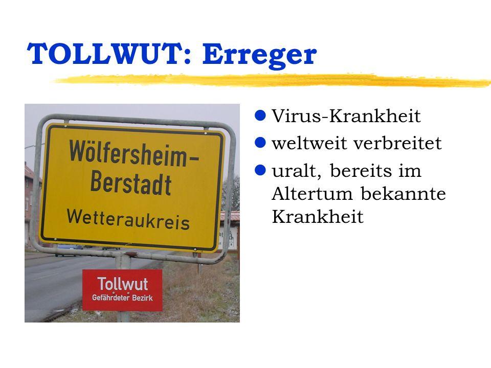 TOLLWUT: Erreger lVirus-Krankheit lweltweit verbreitet luralt, bereits im Altertum bekannte Krankheit