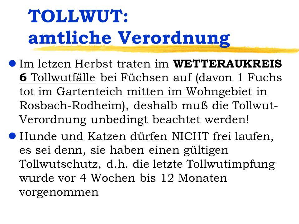TOLLWUT: amtliche Verordnung lIm letzen Herbst traten im WETTERAUKREIS 6 Tollwutfälle bei Füchsen auf (davon 1 Fuchs tot im Gartenteich mitten im Wohn