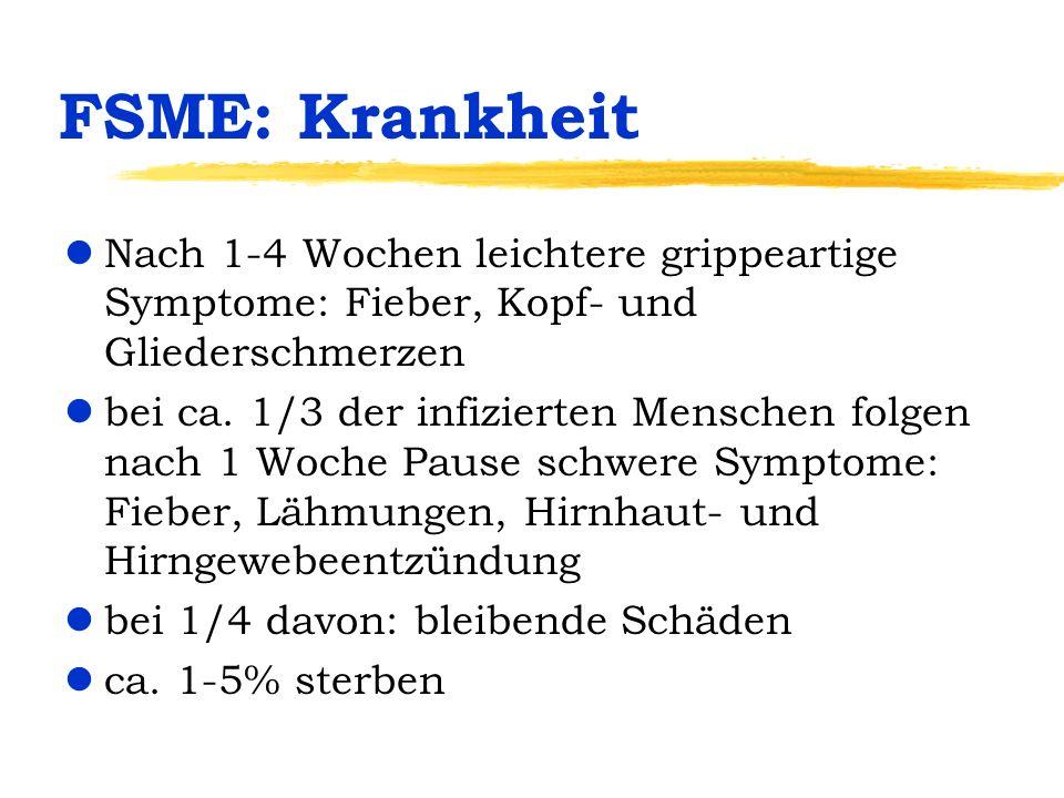 FSME: Krankheit lNach 1-4 Wochen leichtere grippeartige Symptome: Fieber, Kopf- und Gliederschmerzen lbei ca. 1/3 der infizierten Menschen folgen nach