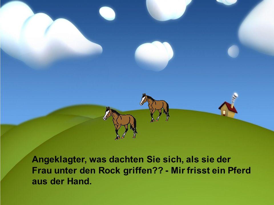 Angeklagter, was dachten Sie sich, als sie der Frau unter den Rock griffen?? - Mir frisst ein Pferd aus der Hand.