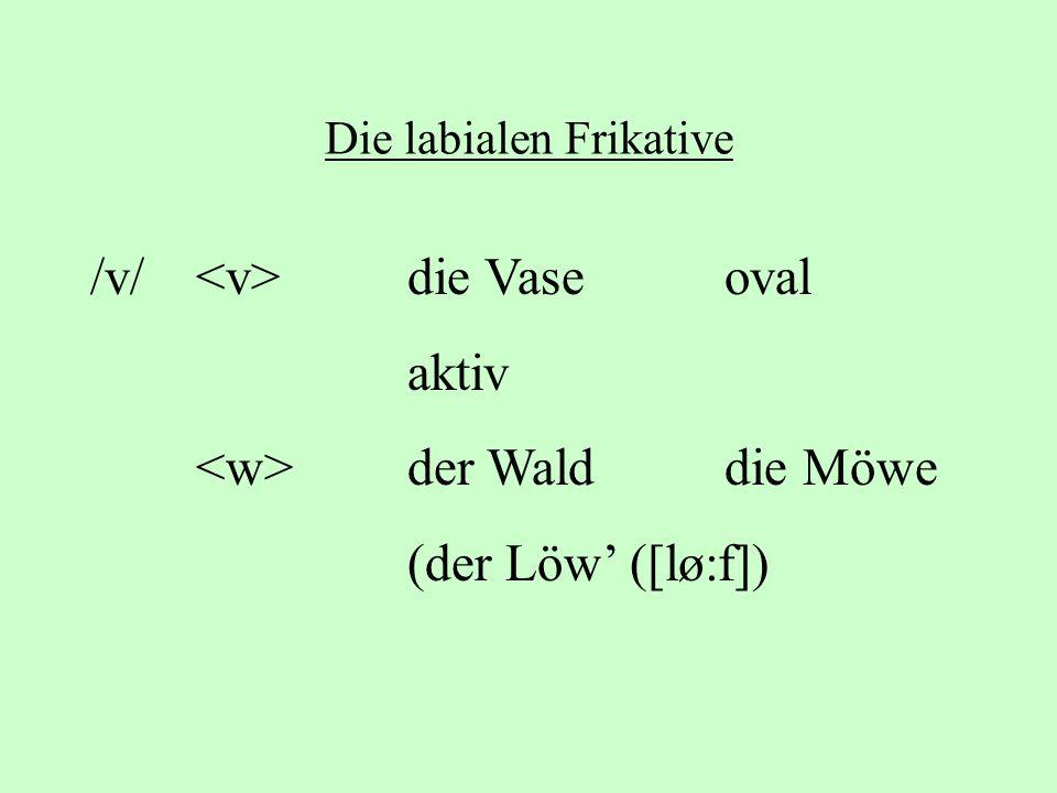 Die labialen Frikative /v/ die Vaseoval aktiv der Walddie Möwe (der Löw ([lø:f])