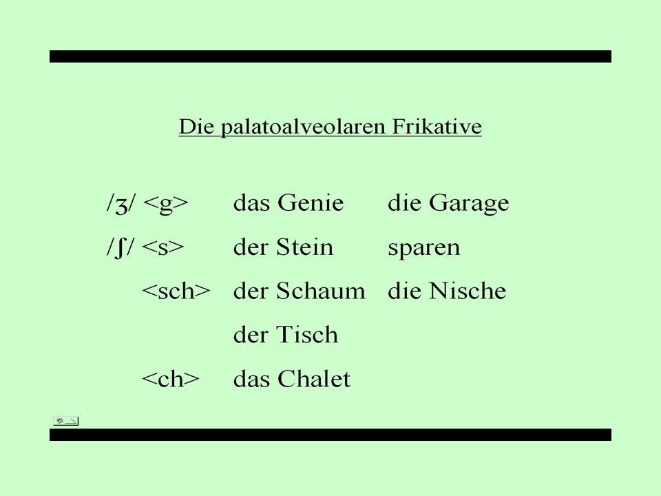 Die velaren Frikative /h/ Ich–Laut[ç]weichendich Ach–Laut [x]wachennach das Hausder Uhu