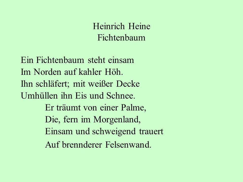 Heinrich Heine Fichtenbaum Ein Fichtenbaum steht einsam Im Norden auf kahler Höh. Ihn schläfert; mit weißer Decke Umhüllen ihn Eis und Schnee. Er träu