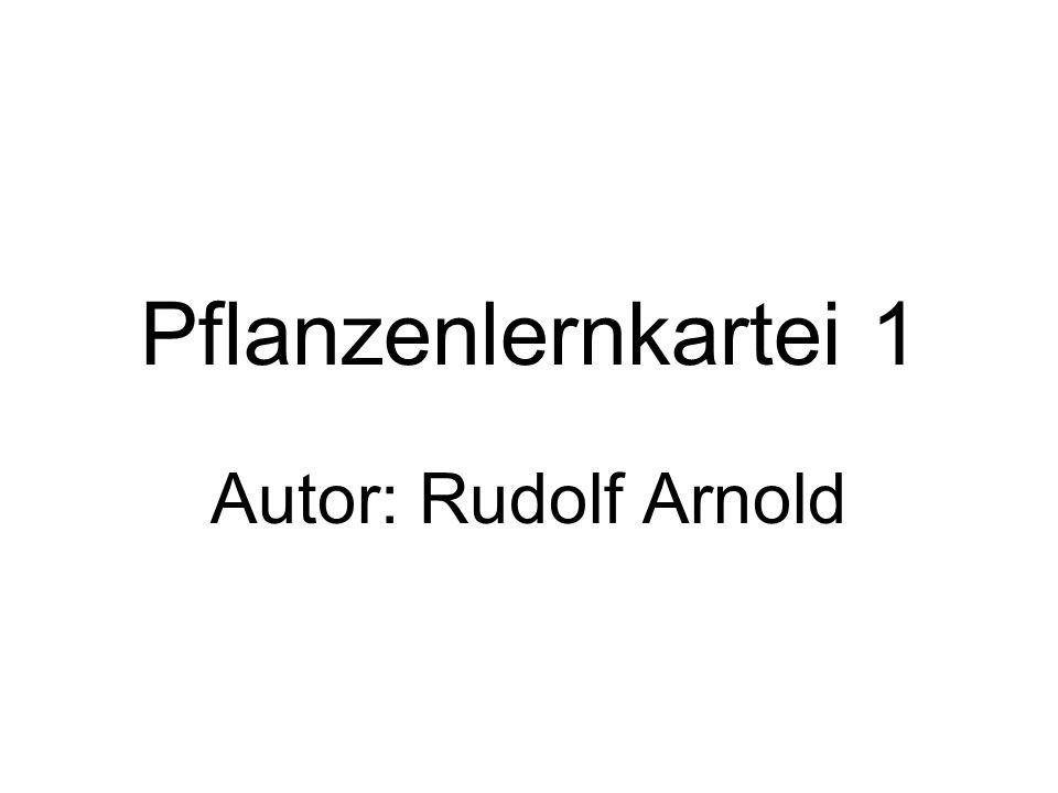 Pflanzenlernkartei 1 Autor: Rudolf Arnold