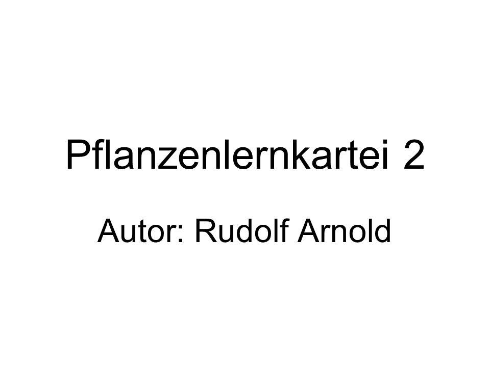 Pflanzenlernkartei 2 Autor: Rudolf Arnold