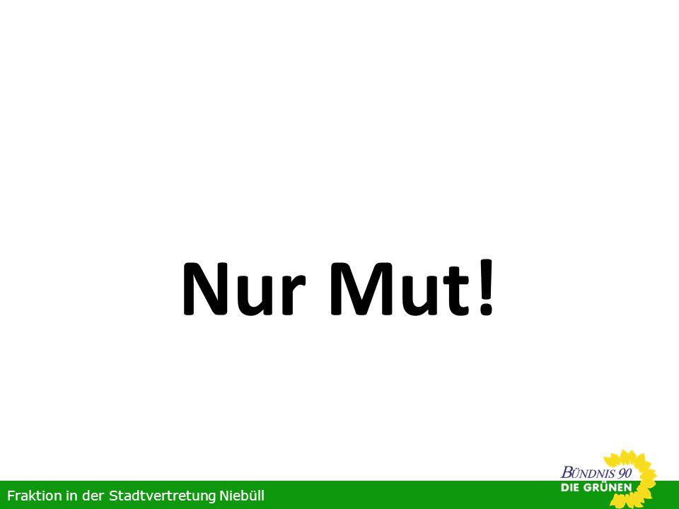 Nur Mut! Fraktion in der Stadtvertretung Niebüll