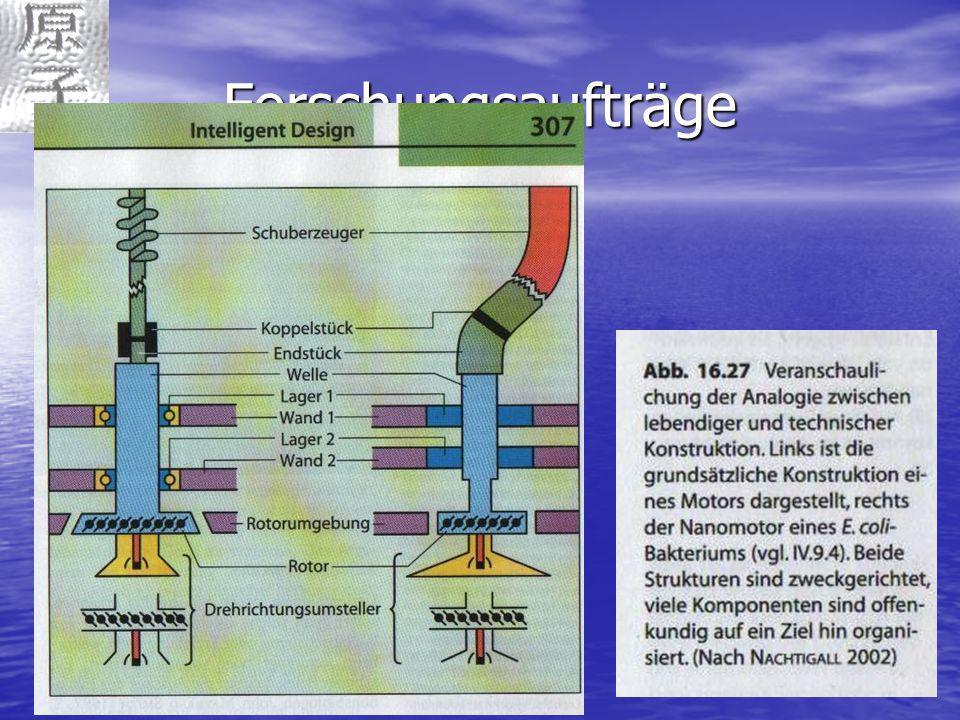 NanotechnologieFranz Langsam Forschungsaufträge Nanomotor bei Bakterien Nanomotor bei Bakterien