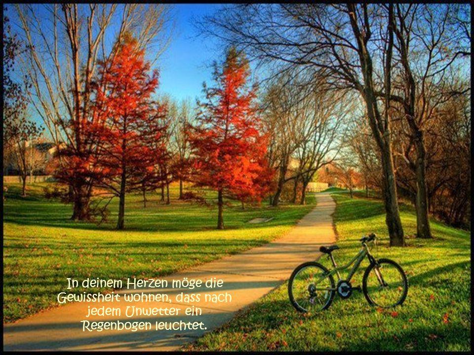 In deinem Herzen möge die Gewissheit wohnen, dass nach jedem Unwetter ein Regenbogen leuchtet.
