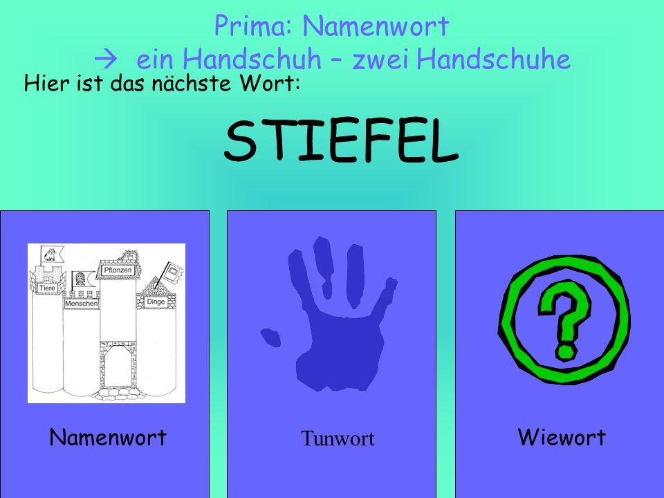 STIEFEL NamenwortWiewort Prima: Namenwort ein Handschuh – zwei Handschuhe Hier ist das nächste Wort: Tunwort