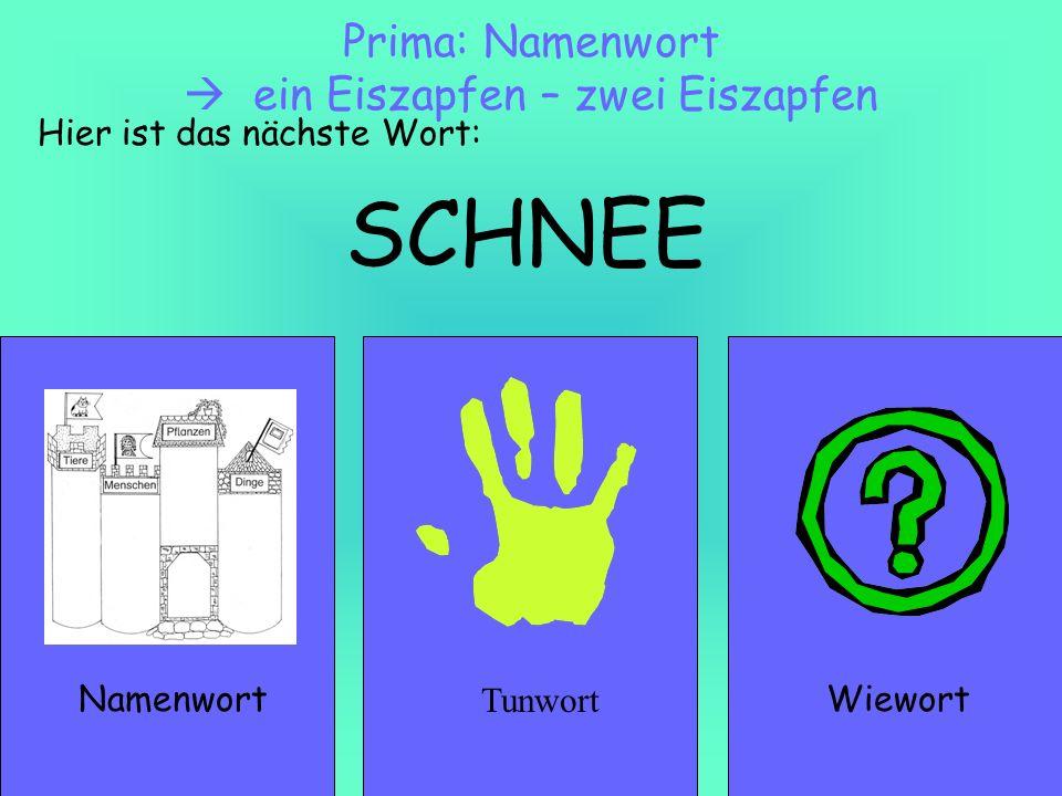 SCHNEE NamenwortWiewort Prima: Namenwort ein Eiszapfen – zwei Eiszapfen Hier ist das nächste Wort: Tunwort