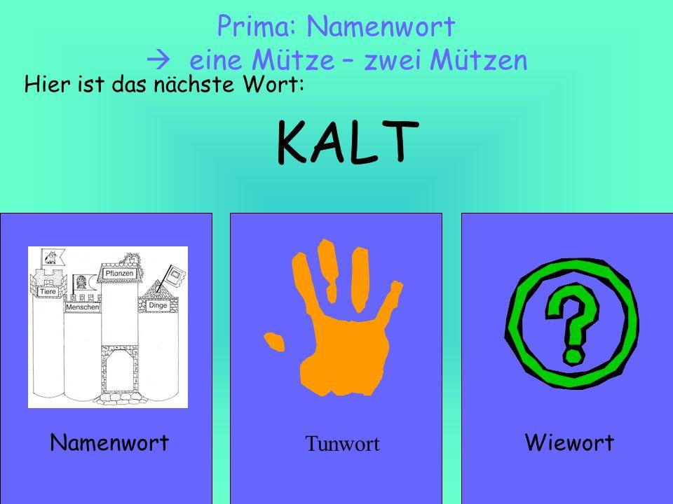 KALT NamenwortWiewort Prima: Namenwort eine Mütze – zwei Mützen Hier ist das nächste Wort: Tunwort