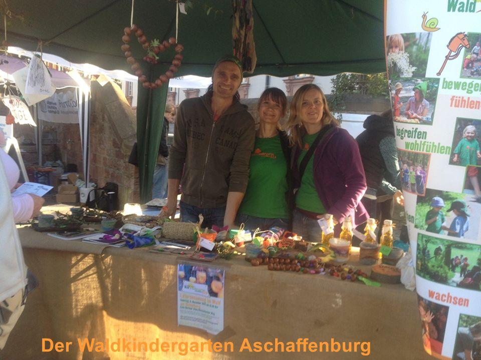 Der Waldkindergarten Aschaffenburg