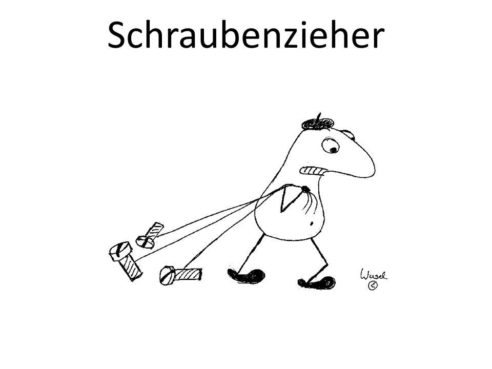 Schraubenzieher