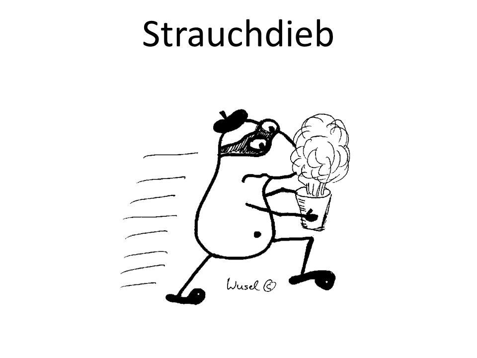 Strauchdieb