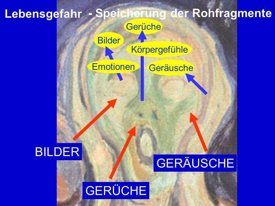 BILDER GERÜCHE GERÄUSCHE Lebensgefahr Bilder Emotionen Gerüche Körpergefühle Geräusche - Speicherung der Rohfragmente