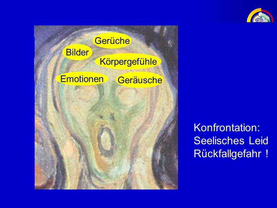 Vermeidung negativen Erlebens Bilder Emotionen Gerüche Körpergefühle Geräusche Konfrontation: Seelisches Leid Rückfallgefahr !