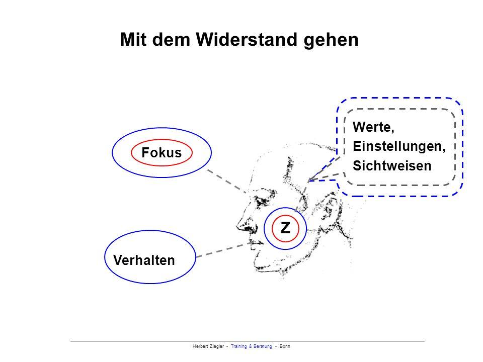 Herbert Ziegler - Training & Beratung - Bonn Mit dem Widerstand gehen Verhalten Z Fokus Werte, Einstellungen, Sichtweisen