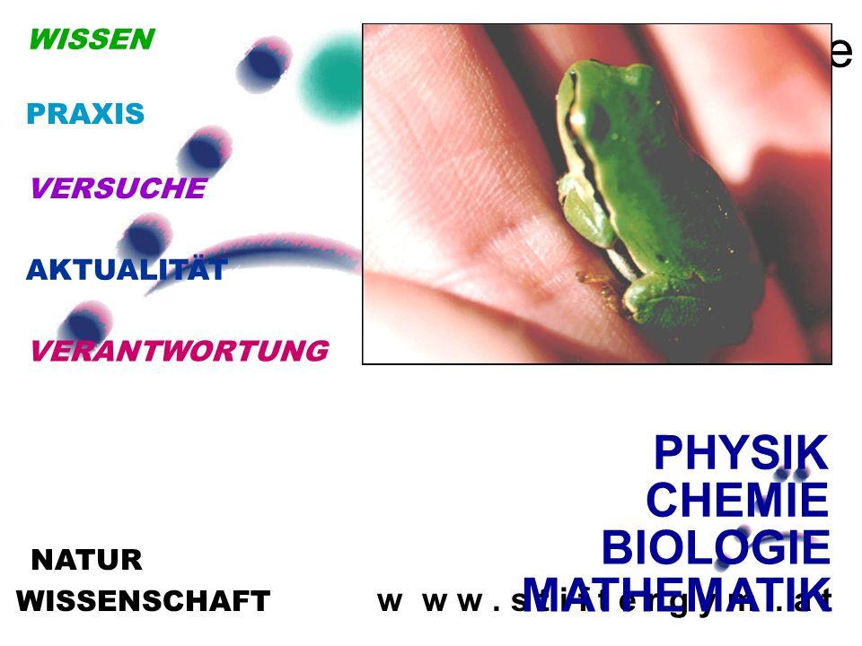 WISSENSCHAFT w w w. s t i f t e r g y m. a t NATUR Naturwissenschafte n BIOLOGIE PHYSIK CHEMIE MATHEMATIK VERANTWORTUNG AKTUALITÄT VERSUCHE WISSEN PRA