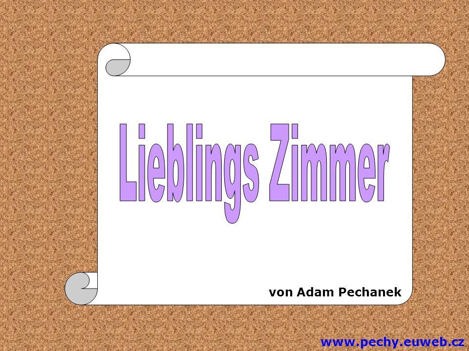 Die Einleitung Gutten Tag, Ich bin Adam Pechanek und ich will Ihnen meine Lieblingszimmer vorstellen.