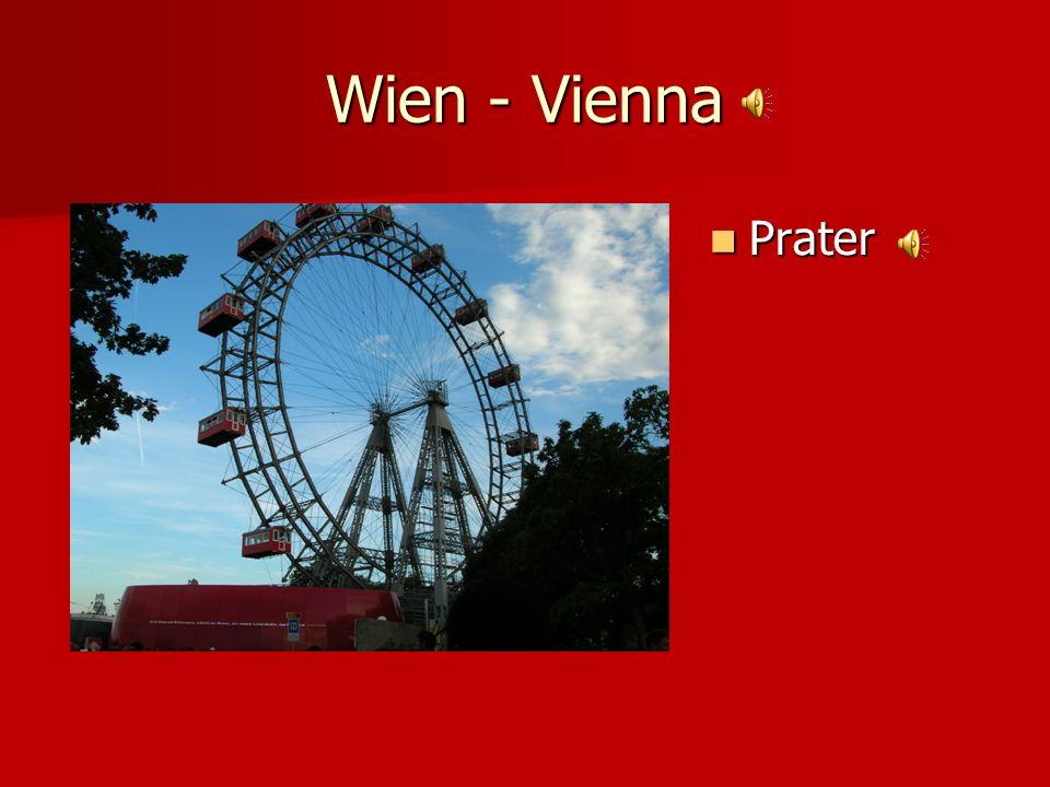 Wien - Vienna Stefansdom Stefansdom (St. Stephens Cathedral) (St. Stephens Cathedral)