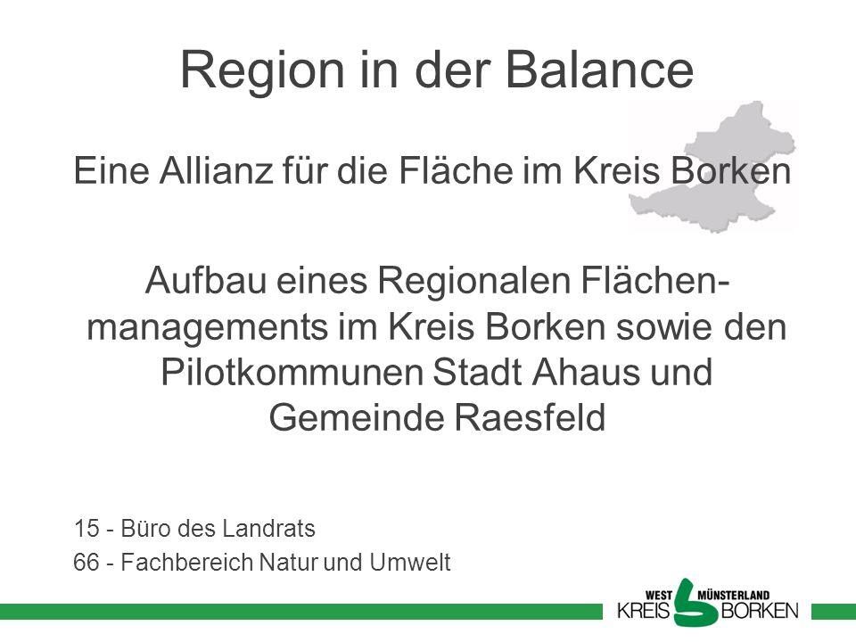 Region in der Balance Eine Allianz für die Fläche im Kreis Borken Aufbau eines Regionalen Flächen- managements im Kreis Borken sowie den Pilotkommunen