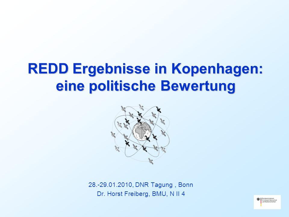 REDD Ergebnisse in Kopenhagen: eine politische Bewertung 28.-29.01.2010, DNR Tagung, Bonn Dr.