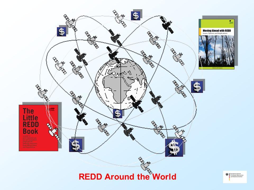 REDD Around the World