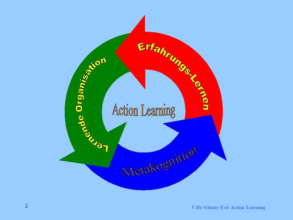 © Dr. Günter Essl Action Learning 2