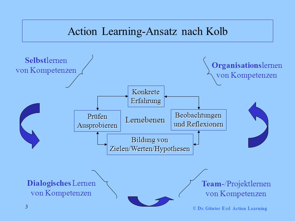 © Dr. Günter Essl Action Learning 14