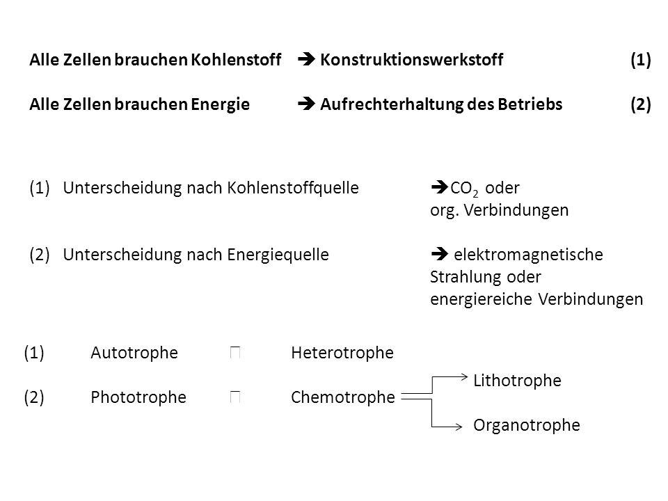 Alle Zellen brauchen Kohlenstoff Konstruktionswerkstoff (1) Alle Zellen brauchen Energie Aufrechterhaltung des Betriebs(2) (1)Unterscheidung nach Kohl