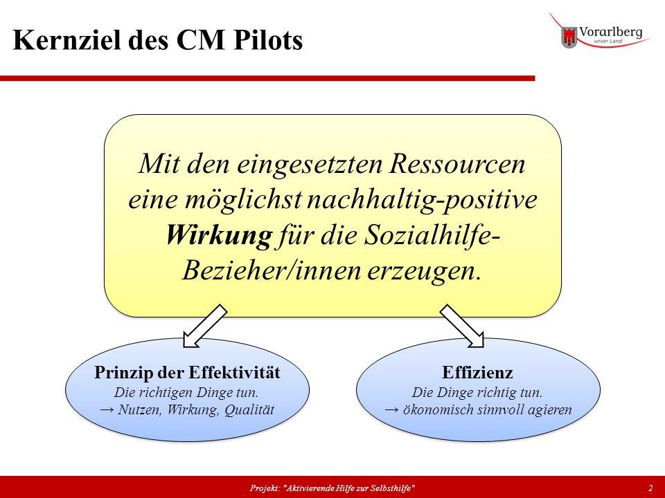 Kernziel des CM Pilots Projekt:
