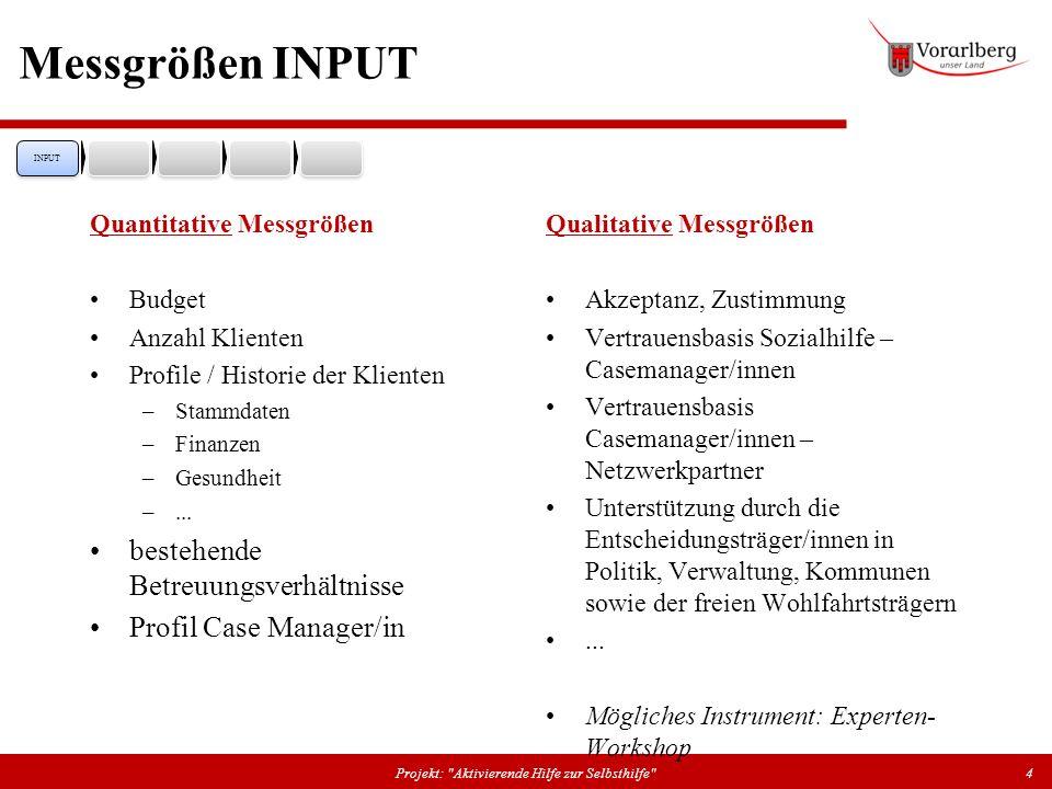 Messgrößen INPUT Quantitative Messgrößen Budget Anzahl Klienten Profile / Historie der Klienten –Stammdaten –Finanzen –Gesundheit –... bestehende Betr