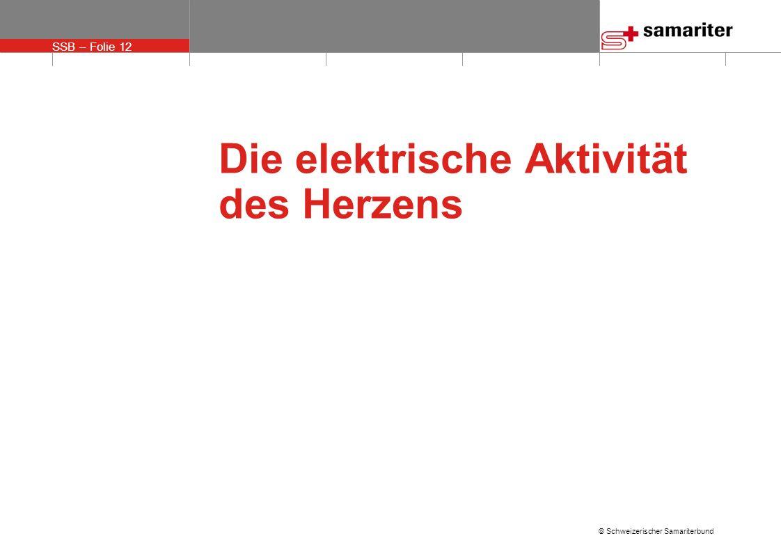SSB – Folie 12 © Schweizerischer Samariterbund Die elektrische Aktivität des Herzens