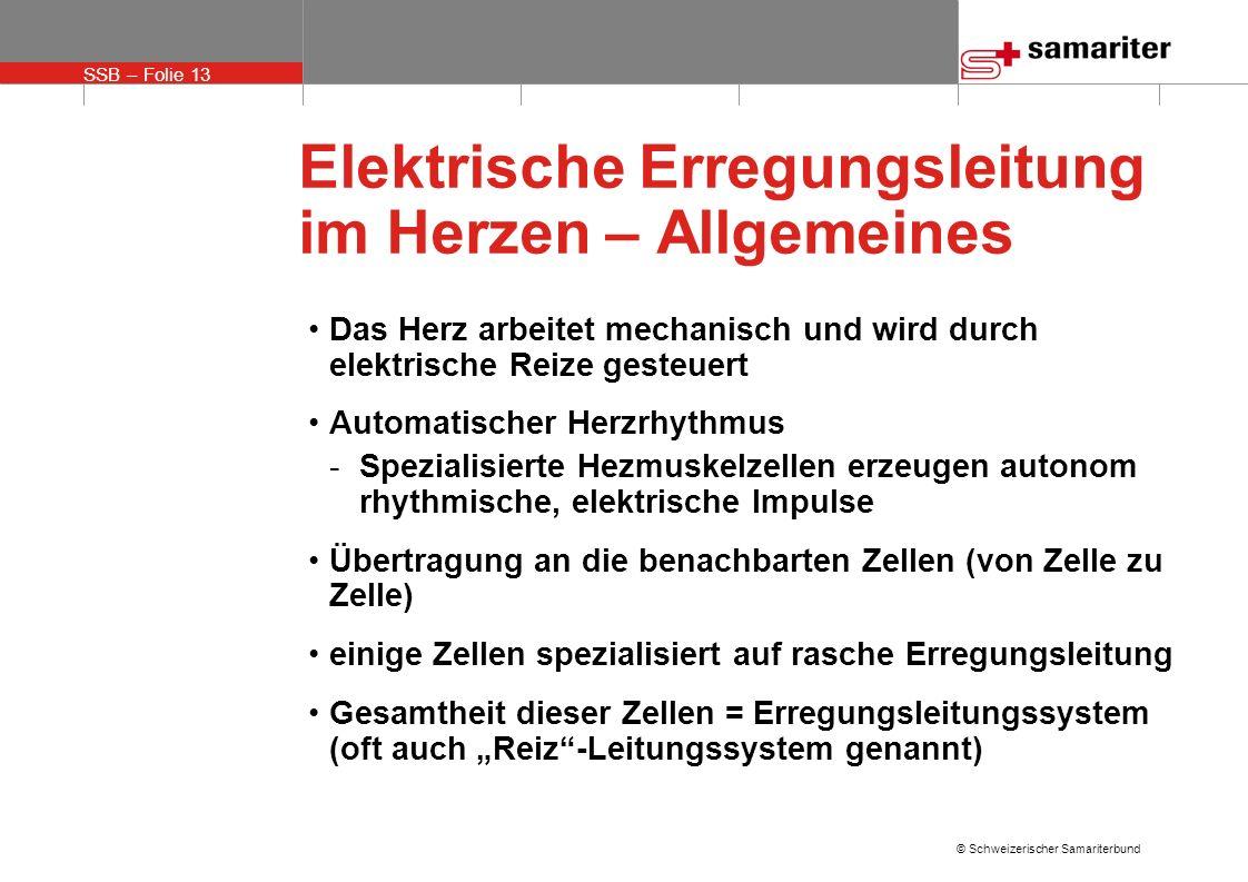 SSB – Folie 13 © Schweizerischer Samariterbund Elektrische Erregungsleitung im Herzen – Allgemeines Das Herz arbeitet mechanisch und wird durch elektr