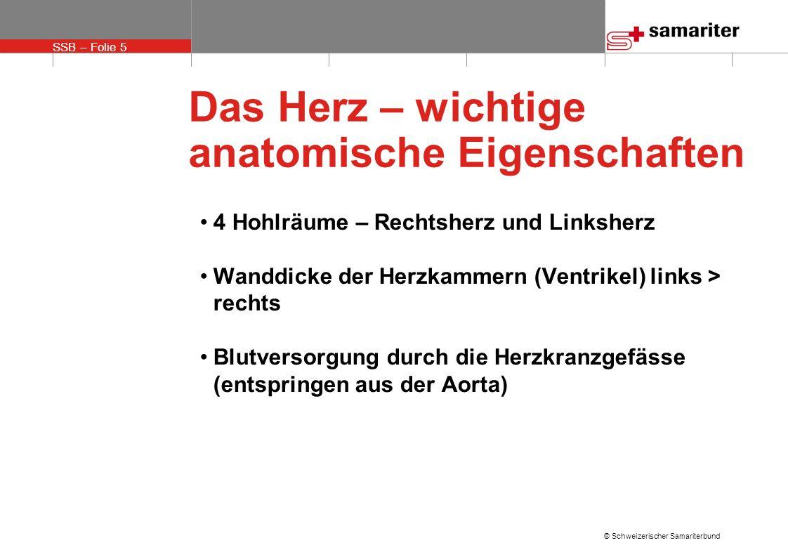 SSB – Folie 5 © Schweizerischer Samariterbund Das Herz – wichtige anatomische Eigenschaften 4 Hohlräume – Rechtsherz und Linksherz Wanddicke der Herzk
