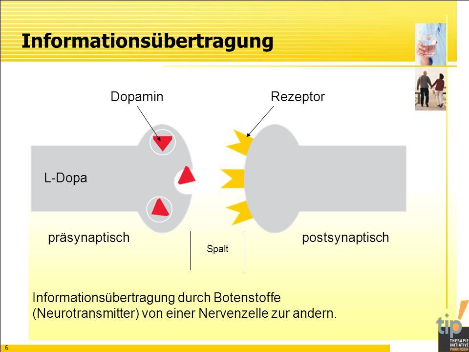 7 DopaminAcetylcholin + Glutamat Botenstoff Dopamin vermindert Überwiegen von Acetylcholin Parkinson-Krankheit Das Gleichgewicht der Botenstoffe ist Voraussetzung für gut koordinierte Bewegungen.