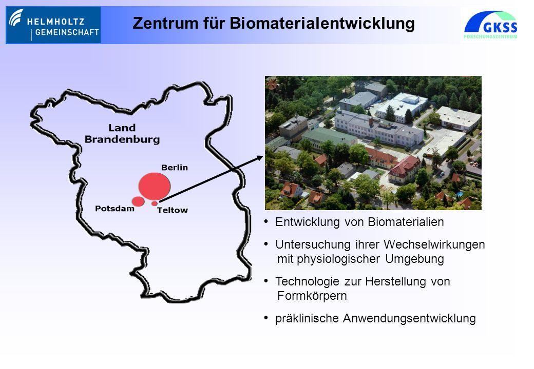 Entwicklung von Biomaterialien Untersuchung ihrer Wechselwirkungen mit physiologischer Umgebung Technologie zur Herstellung von Formkörpern präklinische Anwendungsentwicklung Zentrum für Biomaterialentwicklung