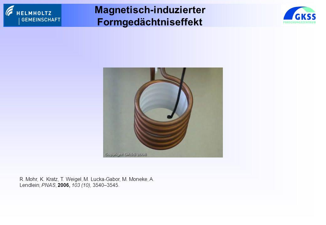 Magnetisch-induzierter Formgedächtniseffekt R.Mohr, K.