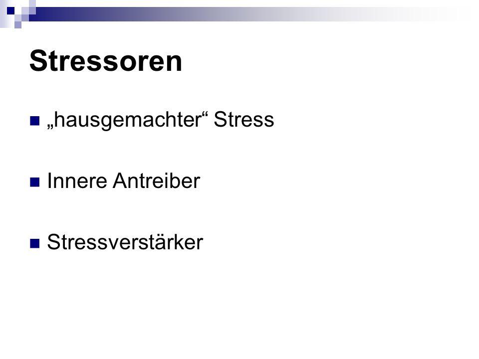 Stressoren hausgemachter Stress Innere Antreiber Stressverstärker