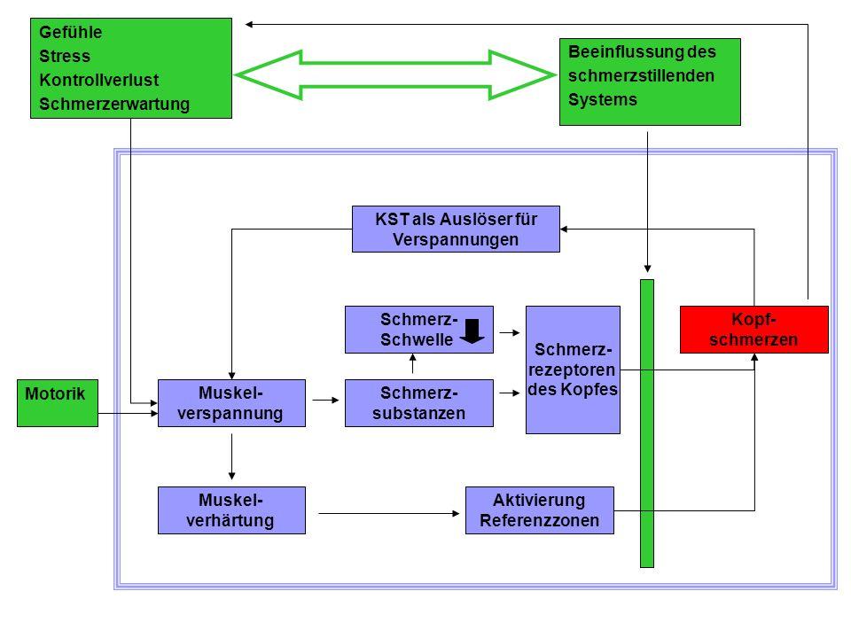 KST-Verhaltensmedizinische Modelle Dysfunktionale Muskelmehrarbeit Mangelnde Wahrnehmung der Muskelspannung Soziale Stressoren Schmerzerwartung Konditionierung Persönliche Verhaltens- und Erlebensstile