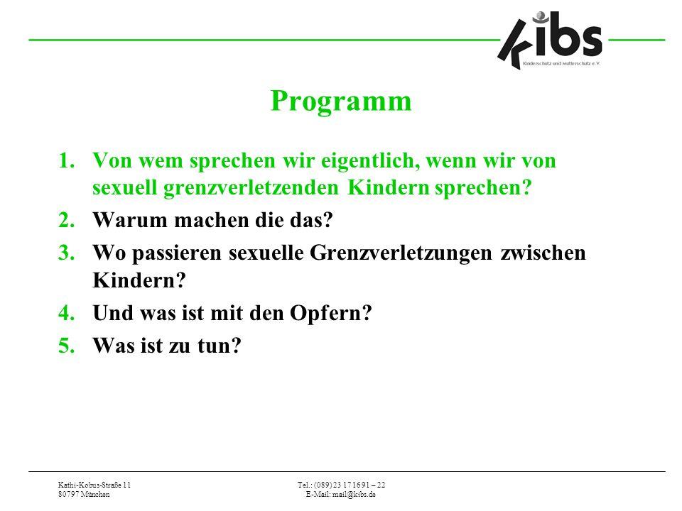 Kathi-Kobus-Straße 11 80797 München Tel.: (089) 23 17 16 91 – 22 E-Mail: mail@kibs.de Programm 1.Von wem sprechen wir eigentlich, wenn wir von sexuell