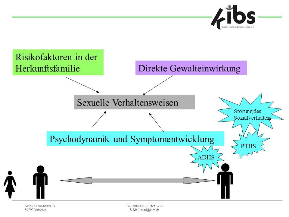 Kathi-Kobus-Straße 11 80797 München Tel.: (089) 23 17 16 91 – 22 E-Mail: mail@kibs.de Risikofaktoren in der Herkunftsfamilie Direkte Gewalteinwirkung