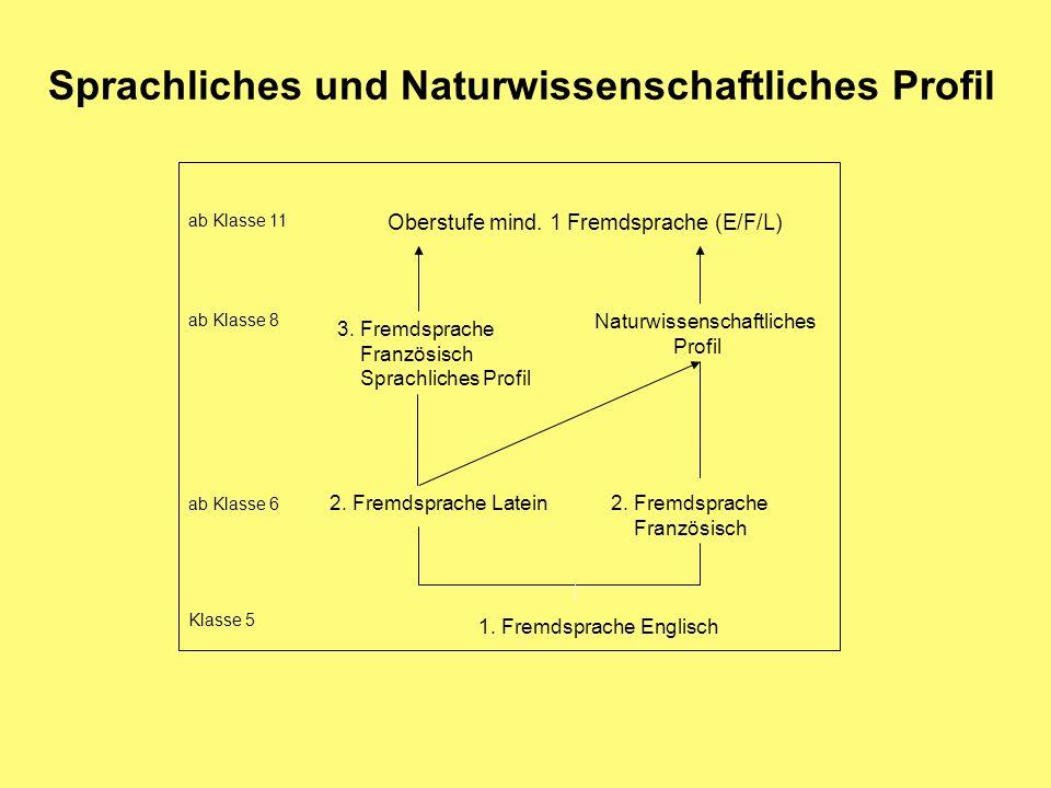 1. Fremdsprache Englisch 2. Fremdsprache Französisch 2. Fremdsprache Latein 3. Fremdsprache Französisch Sprachliches Profil Naturwissenschaftliches Pr