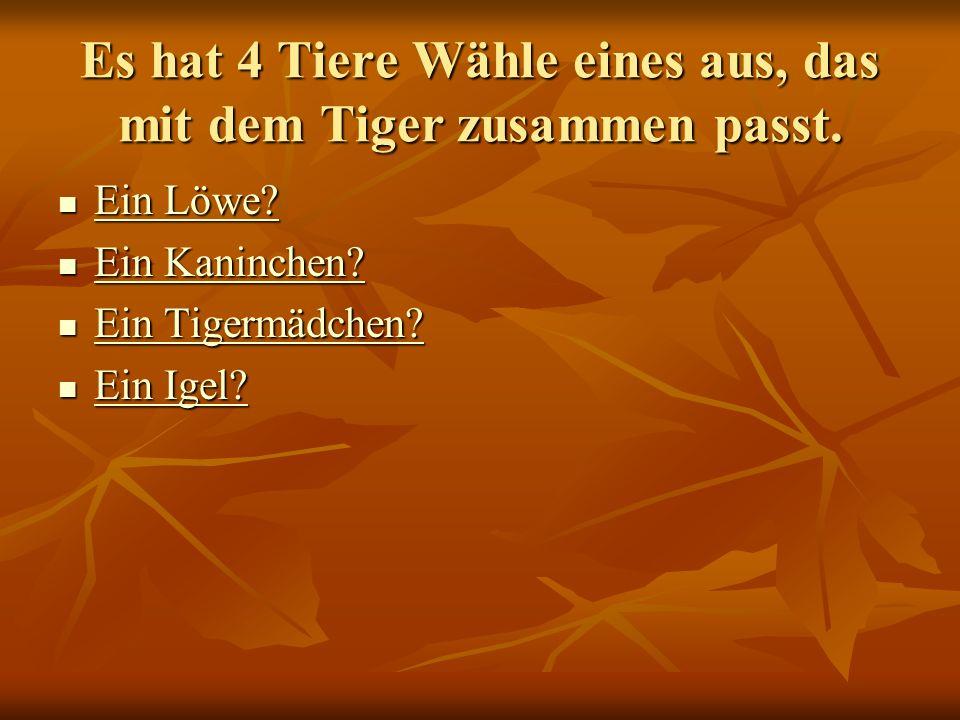 Es hat 4 Tiere Wähle eines aus, das mit dem Tiger zusammen passt. Ein Löwe? Ein Löwe? Ein Löwe? Ein Löwe? Ein Kaninchen? Ein Kaninchen? Ein Kaninchen?