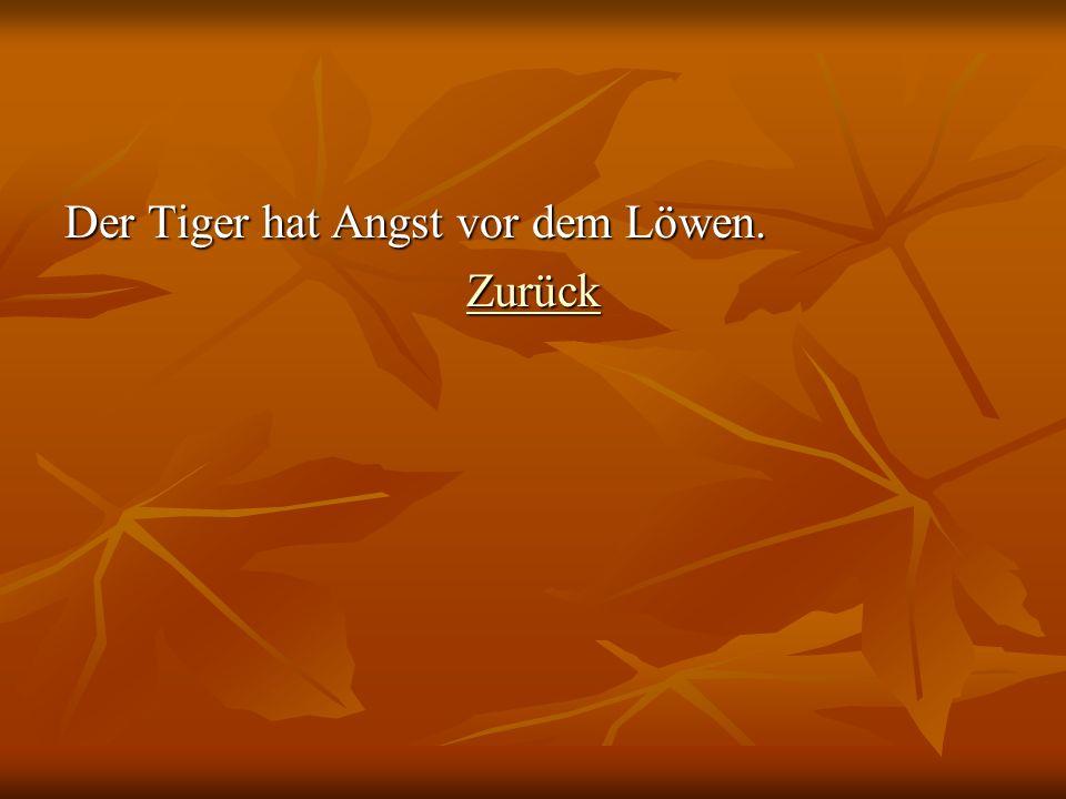 Der Tiger hat Angst vor dem Löwen. Zurück