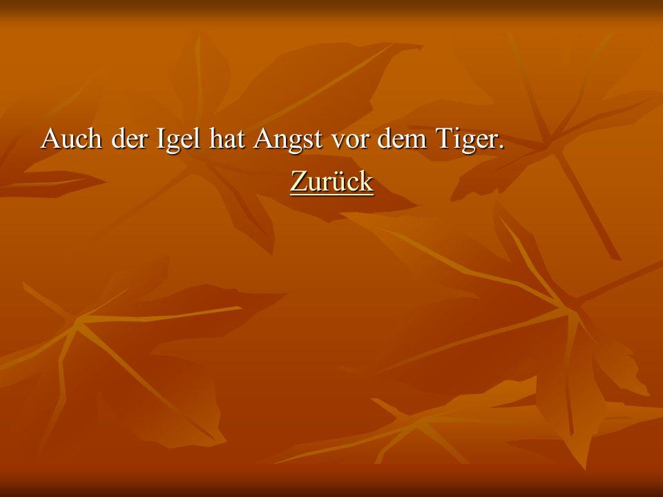 Auch der Igel hat Angst vor dem Tiger. Zurück
